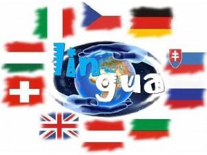 Homepageübersetzung/Technische Übersetzungen/Vertragsübersetzungen Tschechisch/Italienisch/Ungarisch/Rumänisch/Bulgarisch/Englisch - kompetent+günstig